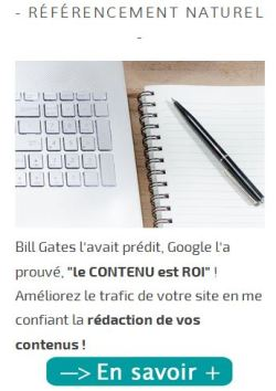 capture-ecran-pave-redaction-web